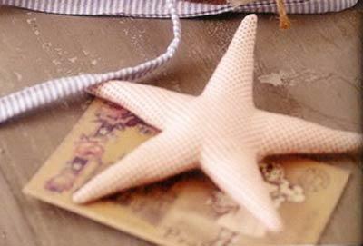 Морская звезда тильда